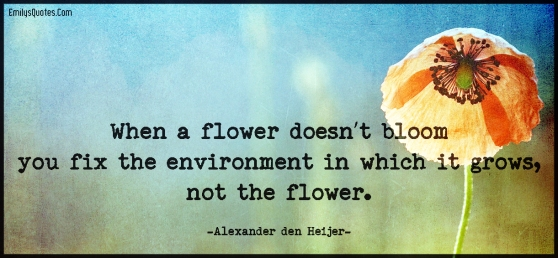 When-a-flower-doesn't-bloom-you-fix-the-environment-in-which-it-grows-not-the-flower.